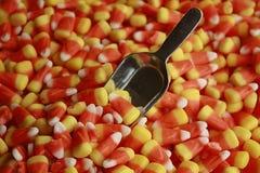 Milho de doces Fotos de Stock