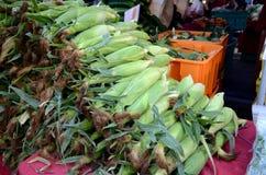 Milho do mercado dos fazendeiros Fotografia de Stock