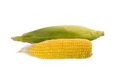 Milho dois Imagem de Stock