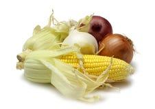 Milho e cebolas Imagens de Stock
