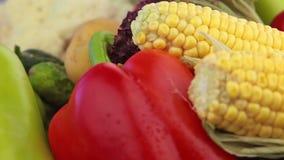 Milho e outros vegetais. Close-up video estoque