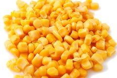 Milho enlatado Foto de Stock Royalty Free