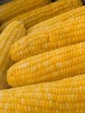 Milho fervido Fotos de Stock