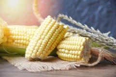 Milho fresco na semente do saco e do milho doce na tabela de madeira rústica foto de stock royalty free