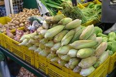 Milho fresco no mercado Imagem de Stock