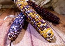 Milho indiano nas pranchas de madeira Imagens de Stock Royalty Free