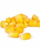 Milho inteiro estanhado da semente fotos de stock royalty free