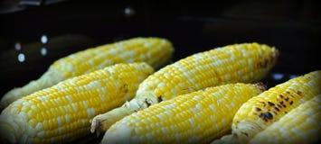 Milho na grade Imagem de Stock