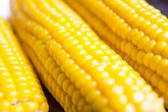 Milho no foco macio Foto de Stock Royalty Free