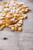 Milho no fundo de madeira Fotografia de Stock