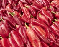 Milho-pimentas vermelhas de Creta Imagens de Stock Royalty Free