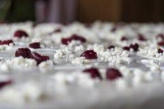Milhojas tradicional imagen de archivo libre de regalías