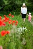Miliampère e filha entre o campo Imagem de Stock Royalty Free