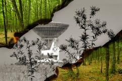 Milieu Concept royalty-vrije stock afbeeldingen