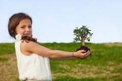 Milieu en aard Stock Afbeelding