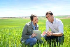 Milieu en landbouw Stock Afbeelding