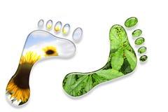 Milieu voetafdrukken. stock illustratie