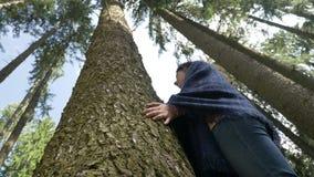 Milieuconcept met hipstervrouw met poncho het bewonderen bos en wat betreft een boom op mening van lange bomen tegen hemel - stock footage