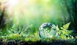Milieuconceptenbol op Moss In Forest - stock foto's