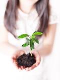 Milieuvriendelijk Stock Foto's