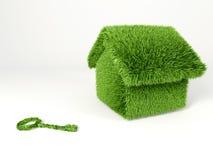 Milieuvriendelijk huis Stock Foto
