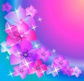Milieux abstraits avec les fleurs transparentes. Photos libres de droits