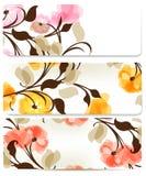Milieux abstraits floraux réglés pour la conception Photos libres de droits