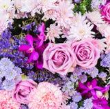 Milieux de fleur Images libres de droits