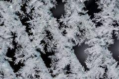 Milieux de flocon de neige Images libres de droits
