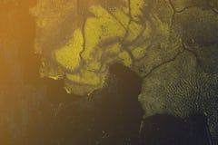 Milieux de rouille - fond parfait avec l'espace pour le texte ou l'ima Images libres de droits