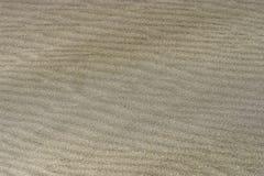 Milieux de sable texturisé Images stock