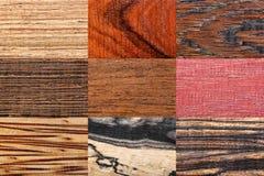 Milieux en bois réglés Photos stock