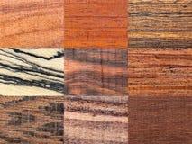 Milieux en bois réglés Image stock