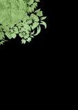 Milieux floraux de type illustration libre de droits
