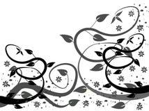 Milieux floraux noirs et blancs Photographie stock