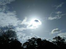 Milieux : lumière du soleil Photos stock