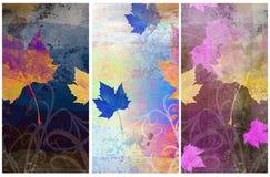 Milieux relatifs d'automne sale Photo stock