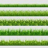 Milieux sans couture réalistes de vecteur d'herbe verte d'isolement Photo libre de droits