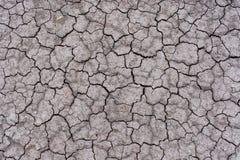 Milieux/textures criqués secs de la terre Photos libres de droits