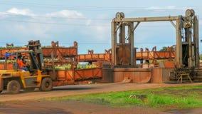 MILILANI, ESTADOS UNIDOS DA AMÉRICA - 12 DE JANEIRO DE 2015: um operário move um escaninho dos abacaxis para uma correia transpor imagem de stock royalty free