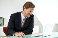 Miling handsome businessman using laptop in office Stock Photos