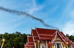 Milione pipistrelli alla Tailandia Fotografia Stock Libera da Diritti