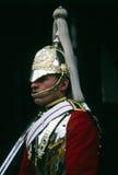 Militär guard Arkivfoton