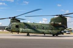 Militär helikopter D-101 för kunglig nederländsk flygvapenKoninklijke Luchtmacht Boeing CH-47D Chinook tvilling- engined tung ele Arkivbild