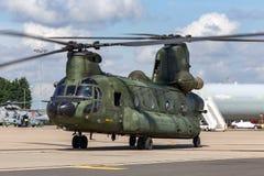 Militär helikopter D-101 för kunglig nederländsk flygvapenKoninklijke Luchtmacht Boeing CH-47D Chinook tvilling- engined tung ele Fotografering för Bildbyråer