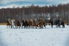Militär-historische Rekonstruktion von Kämpfen von Zeiten der ersten Welt auf dem Borodino fangen am 13. März 2016 auf Stockfotos