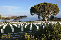 Militär kyrkogård för Förenta staterna i San Diego, Kalifornien Fotografering för Bildbyråer