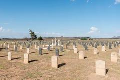 Militär kyrkogård på Springfontein Arkivfoto