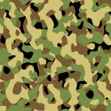 militär modellvektor Royaltyfri Foto