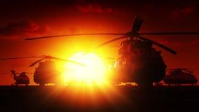 Militära helikoptrar på soluppgång stock video